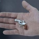 Swiss mini-gun