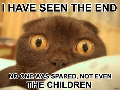 Prophet Lol Cat - I Have Seen The Future and No One Was Spared Not Even the Children
