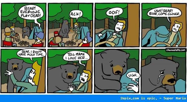 Funny Comic: Bear Play Dead