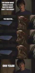 You Know What Would Please Master Harry Dobby